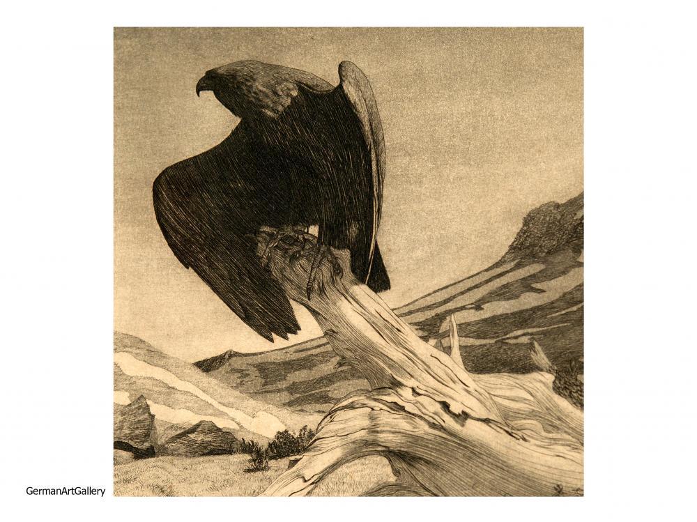 Hans Frank, Adler